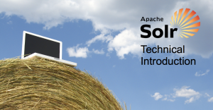 solr-technical-introduction-image